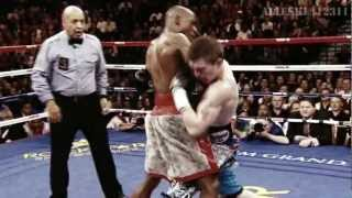 Floyd Mayweather Highlights 2013
