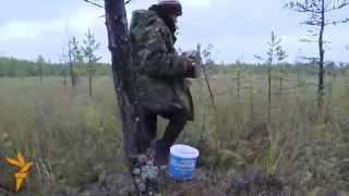 Video 'There Is No Other Way': How A Siberian Village Survives On The Forest MP3, 3GP, MP4, WEBM, AVI, FLV Juli 2019