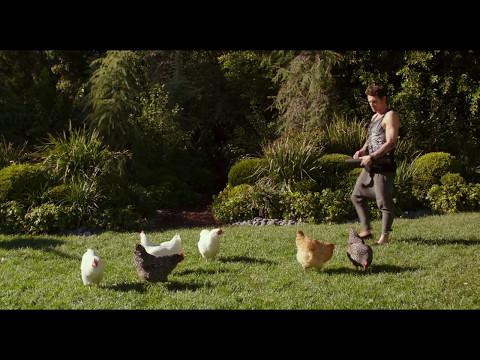 WHY HIM (2016) - Chicken Parkour Fight Scene - Movie Clips HD