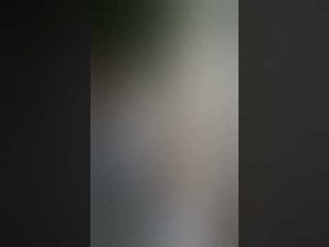 Video huzoor Arslaan miyan sahab ,shehzada e khandan e alahazrat (2014) download in MP3, 3GP, MP4, WEBM, AVI, FLV January 2017