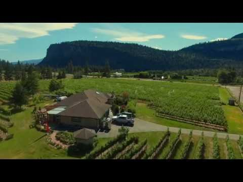 South Okanagan Vineyard and Winery For Sale