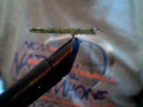 Quill Body Leaf Roller