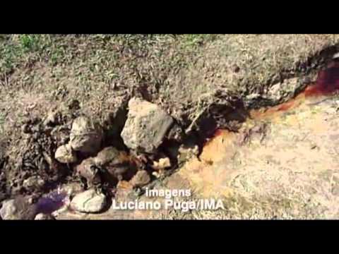 Fiscais do IMA interditam matadouro clandestino em Coronel Pacheco