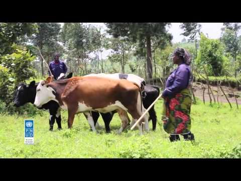 RDC: Congolais et étrangers participent de façon directe  à l'Agrobusiness 2015 à Kinshasa