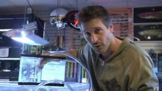 Pet Fish&Aquarium Care Tips : How To Change Water In A Fish Tank