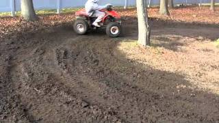 3. Honda SPORTRAX TRX250EX