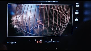 Video Look What You Made Me Do - The Birdcage MP3, 3GP, MP4, WEBM, AVI, FLV Maret 2018