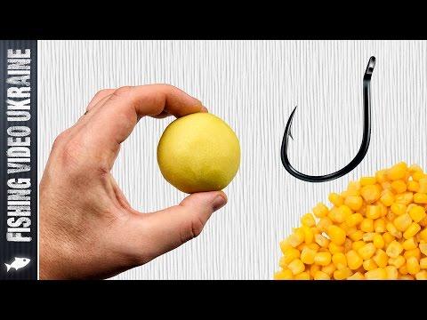 ловля рыбы на горох и кукурузу