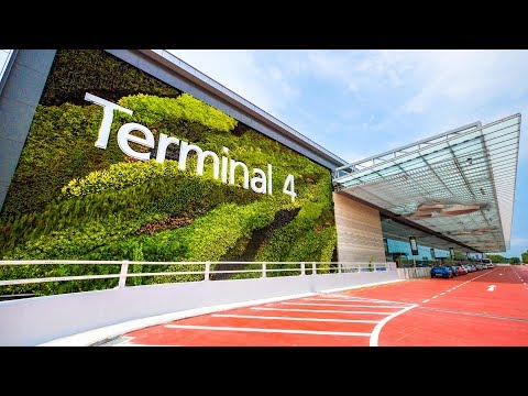 Աշխարհի լավագույն` Չանգի օդանավակայանում բացվել է նոր տերմինալ, որտեղ ամեն ինչ ավտոմատացված է
