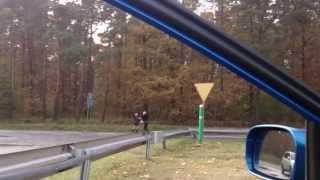 KSW na trasie pod Gnieznem! Dwie blondyny pobiły się o miejscówkę :D