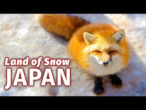 Japan Snow Capital of the World