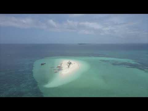 Luna City Express - Zanzibar Sand Bank