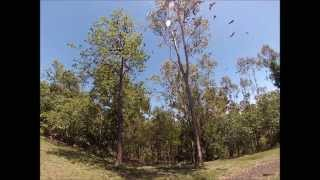 Fernvale Australia  city photos gallery : #2 Thibaud in Australia Gopro Hero 3