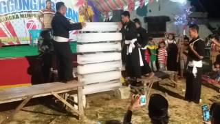 (Pencak silat) Martial arts indonesian PSHT