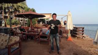 Dahab Egypt  City new picture : Pharrel Williams - Happy - We are from DAHAB, EGYPT