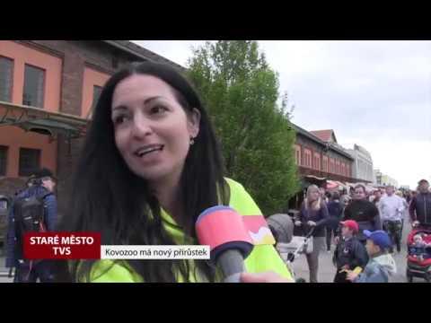 TVS: Deník TVS 30. 4. 2019