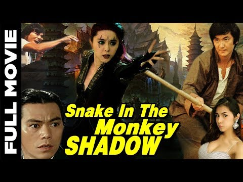 Snake in the Monkey's Shadow | Full Hindi Dubbed Movie | John Chang, Wilson Tong