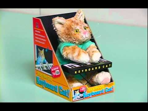 The Keyboard Cat Toy