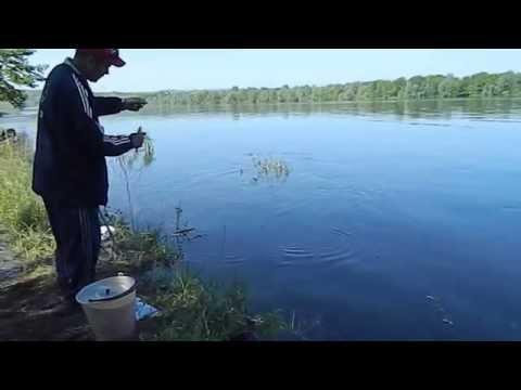 все про рыбалку в кировской области