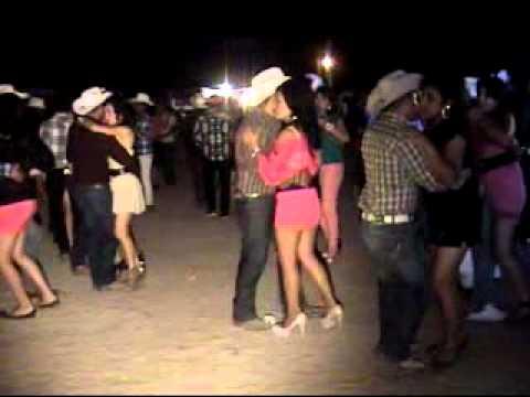 baile de la gallina - bailongo.