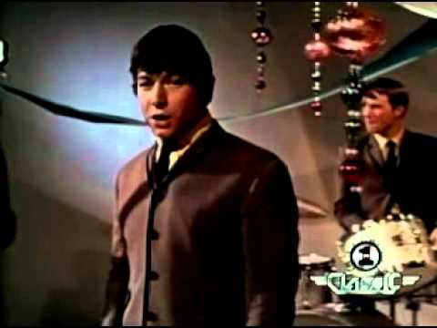The Animals - Please Don't let me be Misunderstood