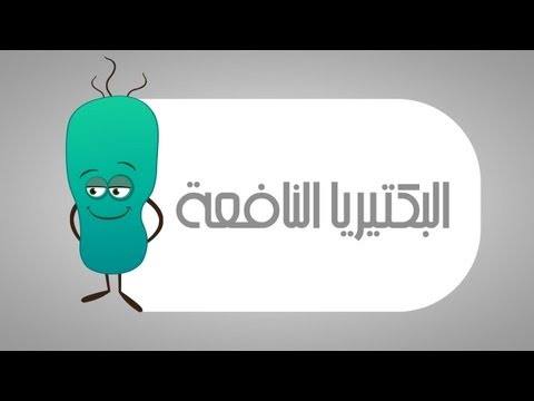 البكتيريا النافعة في جسم الإنسان