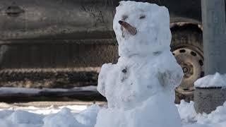video=padure-izaicina-radit-darbus-no-sniega