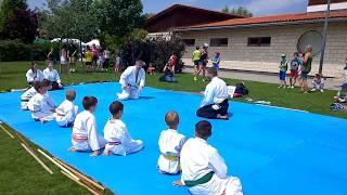 Telki Hungary  City new picture : Norbert Hochstrasser 4th dan Aikido Demonstration - Hungary, Telki
