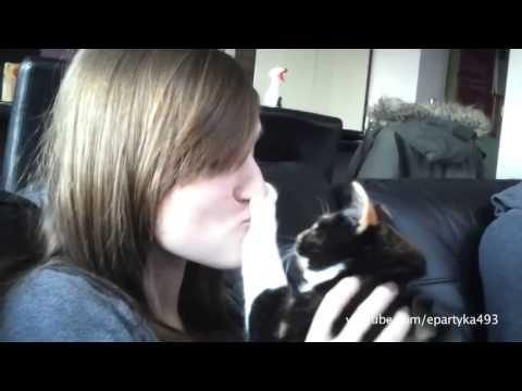 Perros y gatos que odian los besos de los humanos