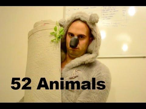 52 Animals 52 animal impressions using household