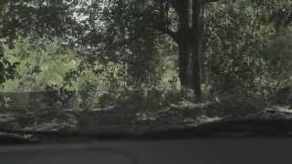 Nonton Laddaland Playground Film Subtitle Indonesia Streaming Movie Download