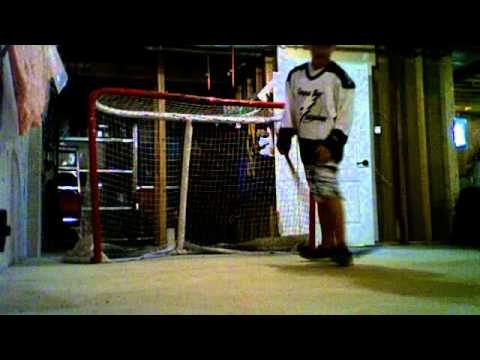 rocco and michael hockey shots video 2