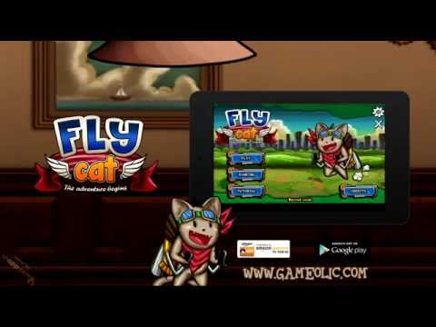 Video of Fly Cat