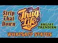 Download Lagu Strip That Down | Whatsapp Status | Thug Life | Liam Payne Mp3 Free