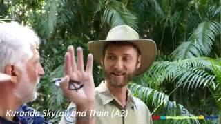 Skyrail Train Cairns Tours