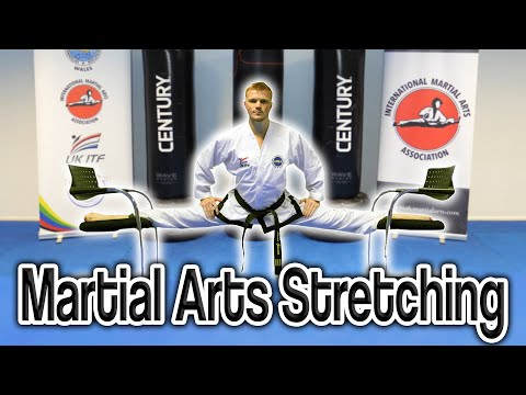 Martial Arts Stretching (Get High Kicks/Splits) | GNT Tutorial