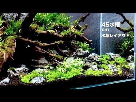 45cm水草水槽 NATURE AQUARIUM