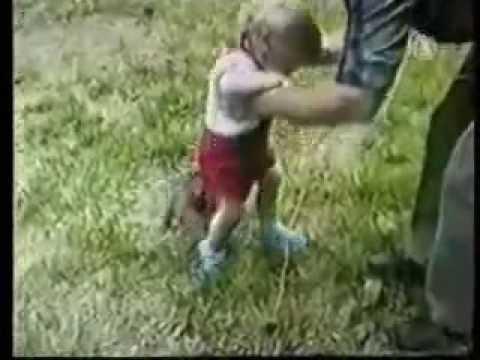 Los mejores videos de risa ( animales )