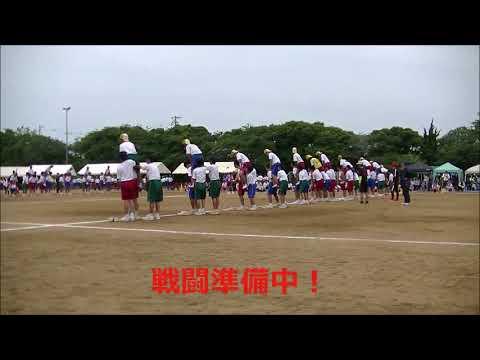 2018.5.26 第62回大野中学校体育祭 キング オブ バトル(騎馬戦) 1