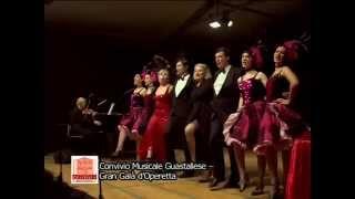 Gran Galà d'Operetta – 22/02/2014