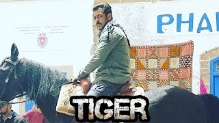 Salman Khan Rides Horse In Morocco For Tiger Zinda Hai☞  Check All Bollywood Latest Update on our Channel & Subscribe  - http://bit.ly/SubscribeMoviezAdda ☞  Follow us on Twitter http://goo.gl/Z4wno5☞  Like us on Facebook https://goo.gl/8Kvkhr☞  Circle us on G+ https://plus.google.com/118018009657043521720☞  Follow us on Instagram http://goo.gl/gSysfH