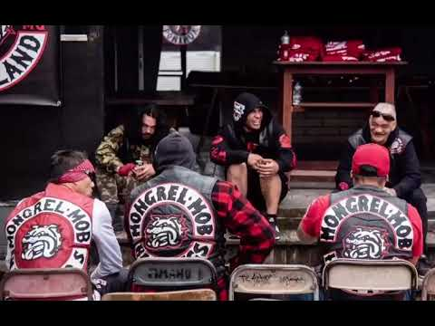 HASTINGS MONGREL MOB - ITI DOG HASTINGS