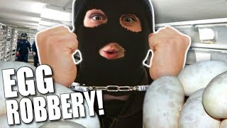 NOAH STEALS MY SNAKE EGGS!! | BRIAN BARCZYK by Brian Barczyk