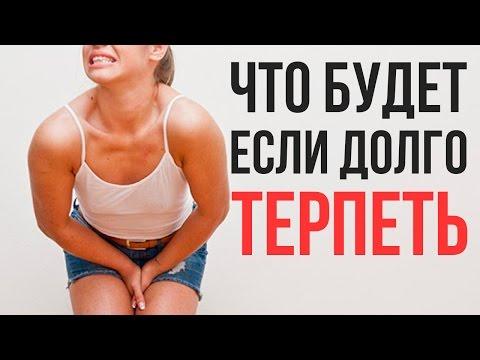 ЧТО БУДЕТ если ВЫ НЕ СХОДИТЕ в ТУАЛЕТ - DomaVideo.Ru