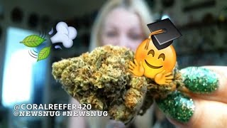 LEGAL POT FUNDS COLLEGE SCHOLARSHIPS?! | News Nug Recap | CoralReefer by Coral Reefer