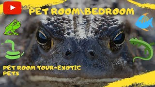 Pet Room  With Fish, Frogs, Snakes And More 2013 Exotic Pets