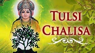 Tulsi Chalisa | Tulsi Vivah Special | Dev Uthani Ekadashi 2019