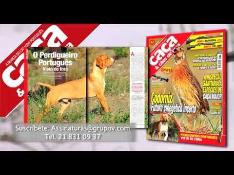 Caça e Cães de Caça, Federcaza & Caza Mayor Julho 2017