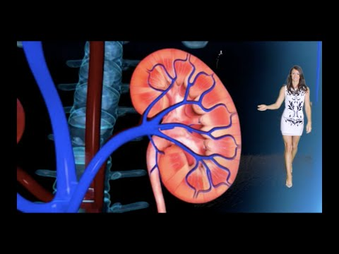 Chronic Renal Failure - A Video for Nurses & Nursing Students