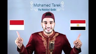 Video Ya Habibal Qolbi | محمد طارق)  يا حبيب القلب _ Mohamed tarek) MP3, 3GP, MP4, WEBM, AVI, FLV Desember 2018